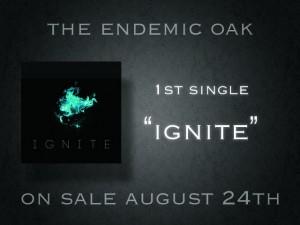 IGNITE_release